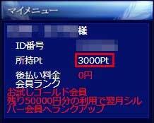 電話占いウィル 新規登録3,000円分ポイント
