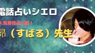 シエロ昴先生 口コミや特徴